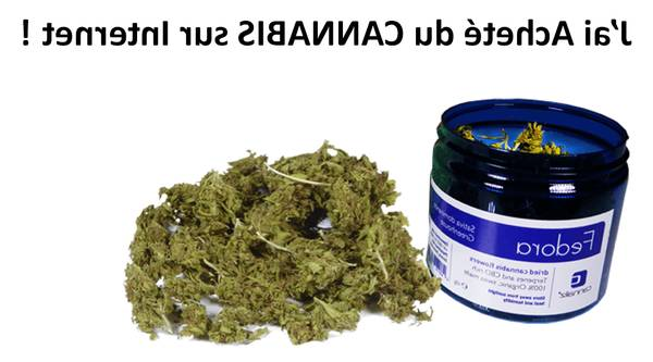 cbd oil avis
